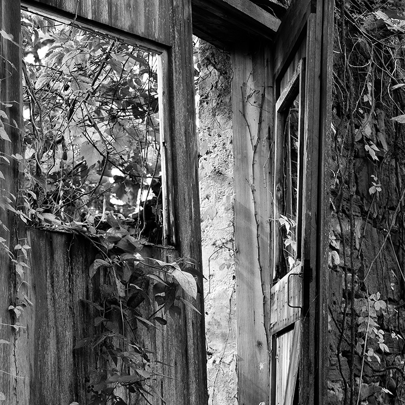 photograph of an old wooden door